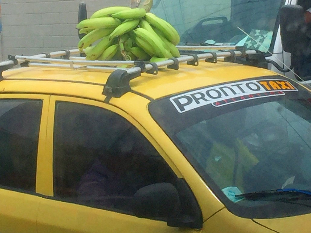 Bananas on highway